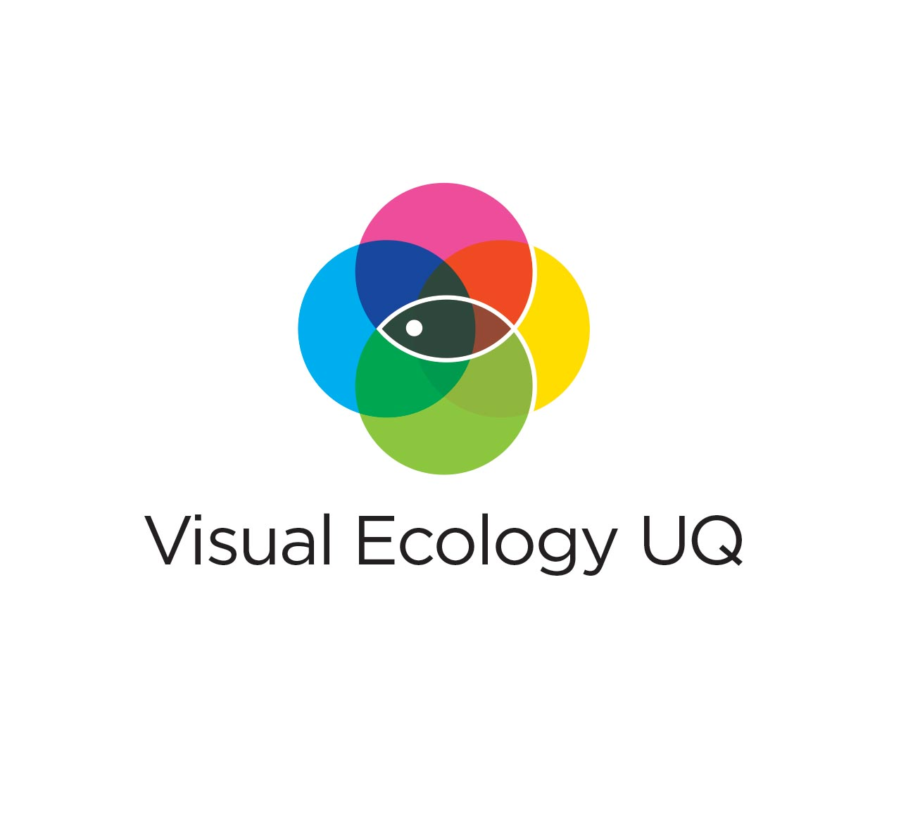 Visual Ecology UQ